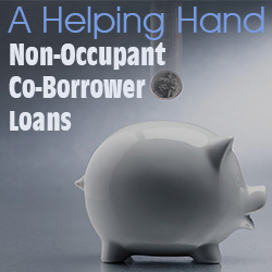 Non Occupying Co Borrower : Non-Occupant Co Borrower Loans